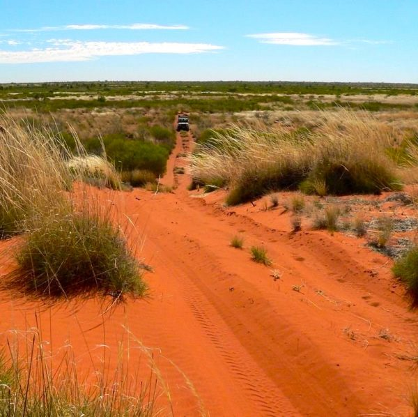 The red, iron-rich soil of the Kimberleys is a dramatic contrast to the vast blue sky.