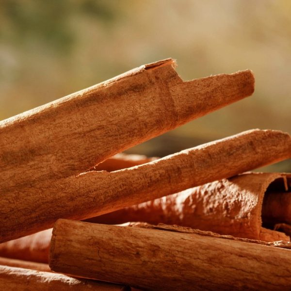 Cinnamon essential oil - a fitting gift for kings and gods - burns with a warm, sweet and spicy aroma. Cinnamomum verum: Obtained from the inner bark of several species, the essential oil can be prepared by roughly pounding the bark, macerating it in sea water, then distilling.