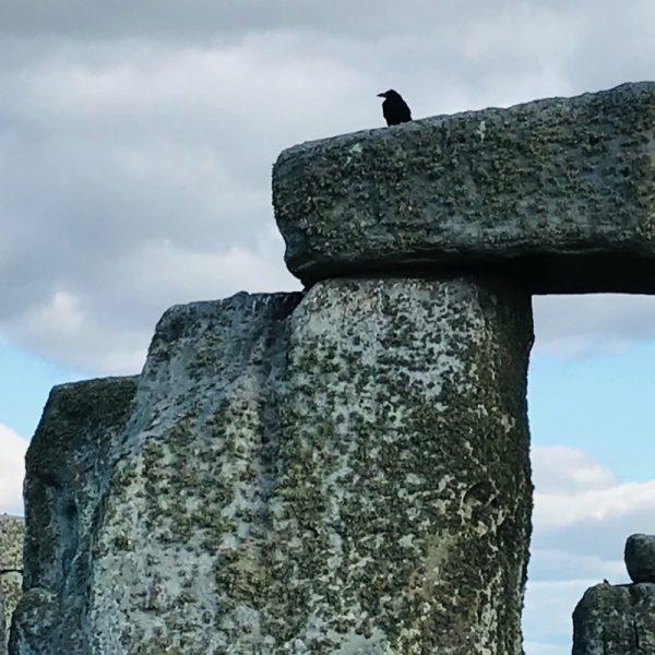 Stonehenge, Amesbury. England Photo Linda Saul