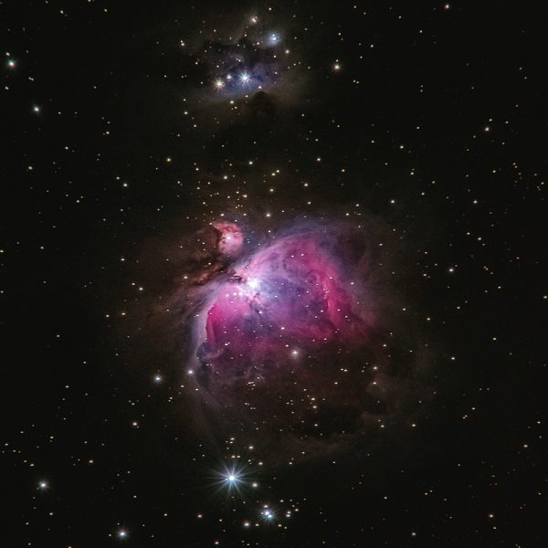 Cosmos. Photo by Alexander Andrews- Unsplash.