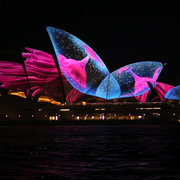 Pink and blue come to stunning life projected on to the Sydney Opera House. Photo by Mark Thompson - Unsplash.